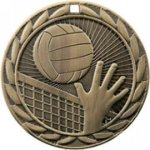 Volleyball FE Iron Medal  Medal Awards