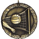 Volleyball Medal Awards