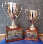 Gold Metal Cup Trophy on Wood Base Trophies