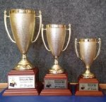 Gold Plastic Cup with Wood Base Trophies